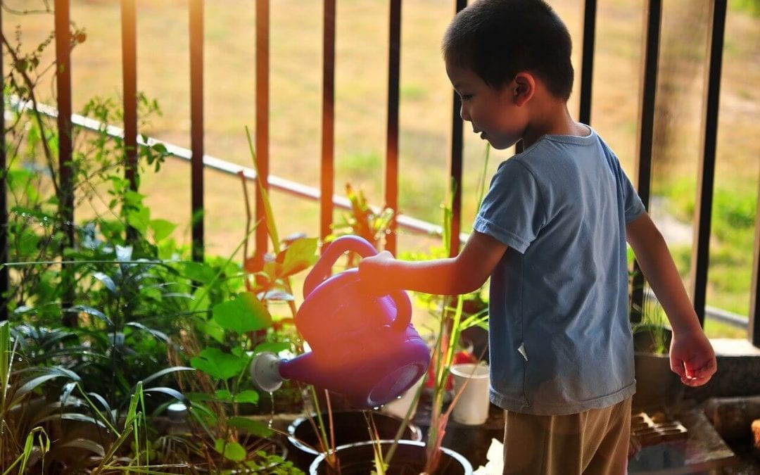kid-friendly improvements include creating a garden space